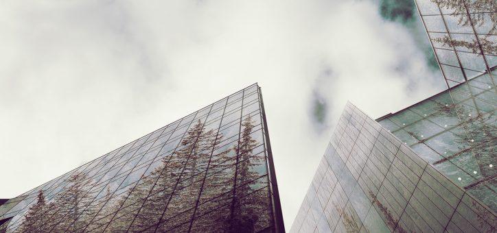 5 Best Online Master's in Sustainability Studies
